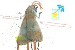 Die Motte